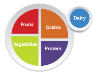 Graphic showing how much of each food group makes up a balanced meal